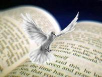 Dove flying above Bible